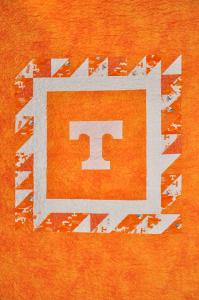 University of Tennessee Throw